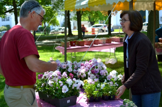 Haverhill Garden Club Plant Sale