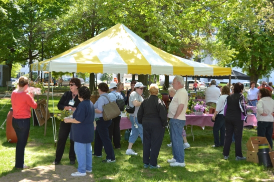 Haverhill Garden Club Annual Plant sale on Bradford Common