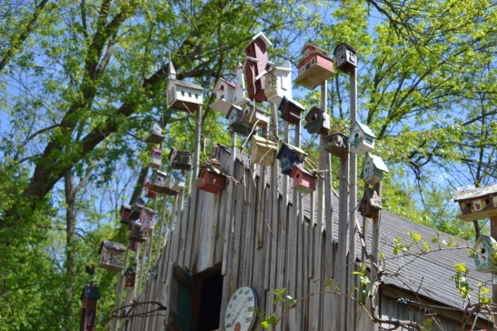 The Giannini Birdhouse collection