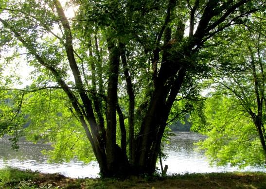 IMG_5916 Haverhill Merrimack River Park Rte 110