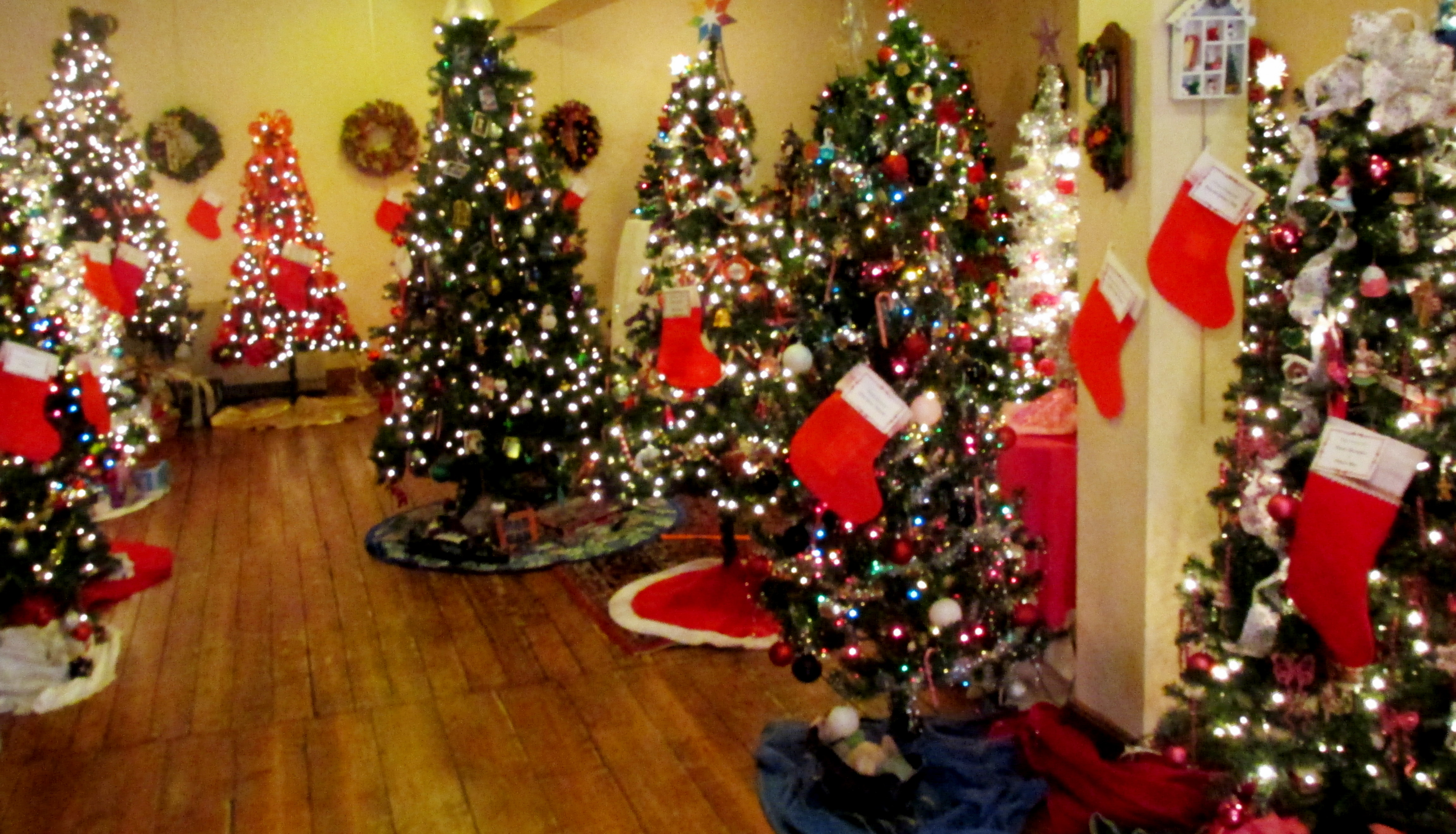 Oh! Christmas Tree! Haverhill Festival Of Trees Is Tops