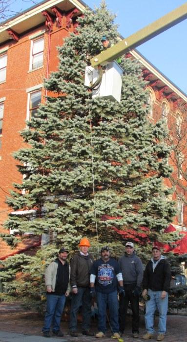 IMG_2231 Haverhill Christmas Tree 2013