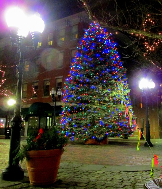 Haverhill's 2013 Christmas Tree
