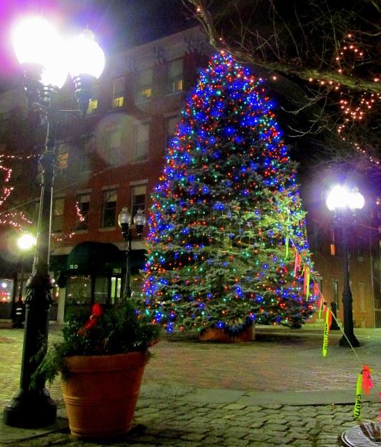 Haverhill's 2013 Christmas Tree
