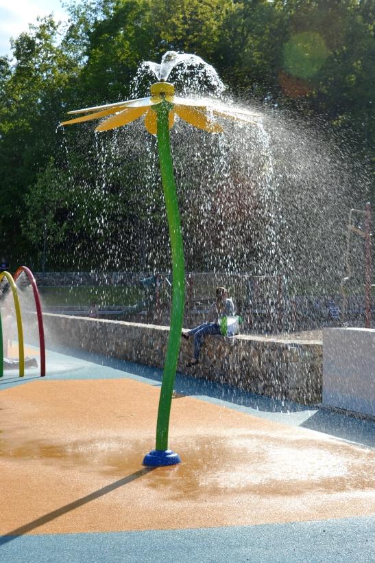 DSC_0434 Haverhil Swasey Park Blog