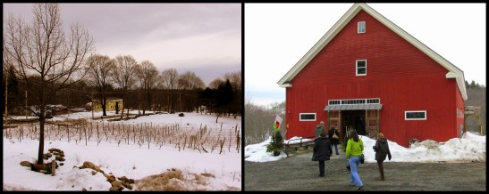 Haverhill Winery Willow Spring winter collage