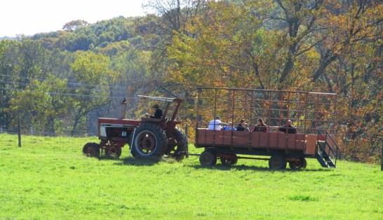IMG_6124 Haverhill foliage blog 2014