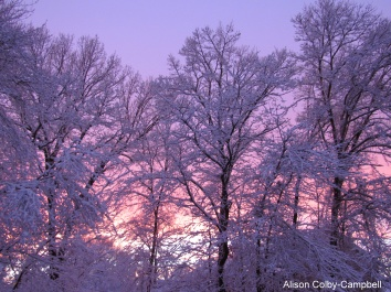 IMG_1168 Haverhill pink sunset after snow storm