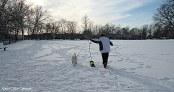 IMG_1503 Haverhill Riverside Park Snow dog park