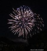 IMG_3197 Haverhill July fireworks 2016