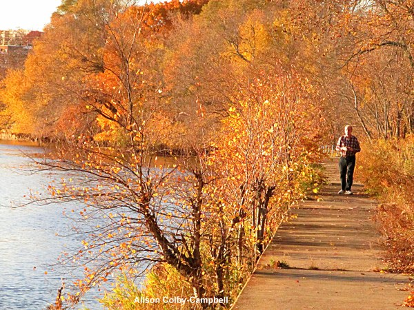 img_4337-haverhill-foliage-jonathan-buttonwoods-trail