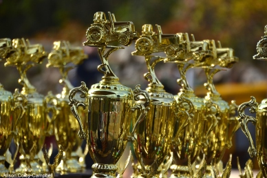 dsc_3170-haverhill-crescent-farm-tractor-pull-2016-edits-trophy-fav