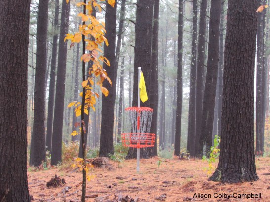 img_0986-haverhill-disc-golf