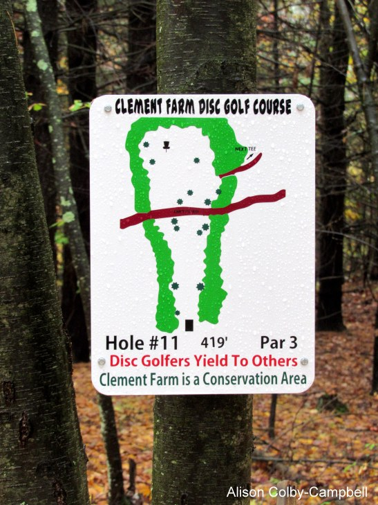 img_0992-haverhill-disc-golf