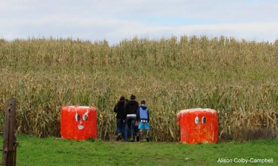 Crescent Farm Corn Maze