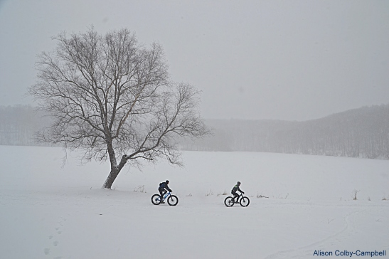 dsc_6030-2017-photo-contest-haverhill-fat-bike-race-series-at-plug-pond-2017-photo-contest