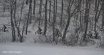 dsc_6497-haverhill-fat-bike-race-series-at-plug-pond