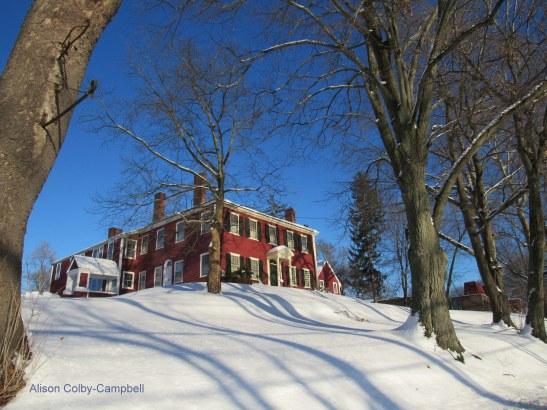 img_6481-haverhill-buttonwoods-winter-snow