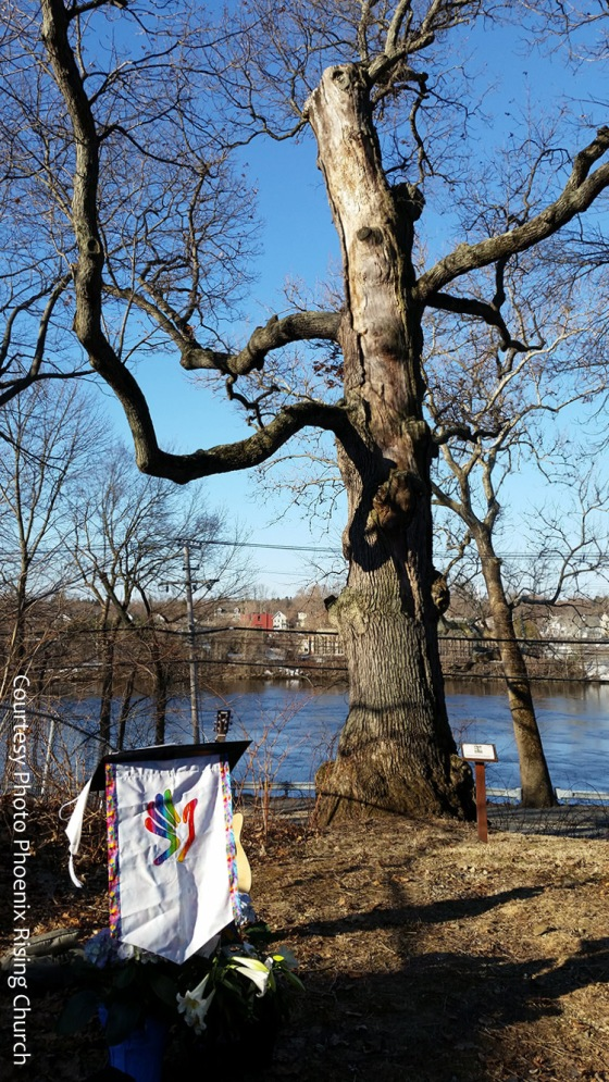 Haverhill Worshiping Oak Phoenix Rising worshiping Oak easter april 5 2015 phoenix rising ucc open and affirming (1)
