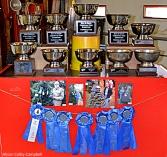 winners of many perfect tree awards