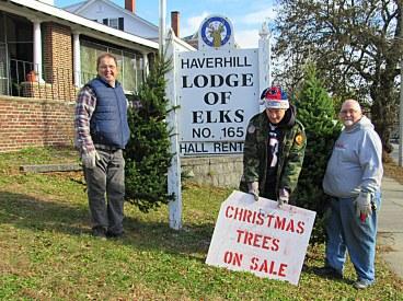 Tree sales by a volunteer sales team