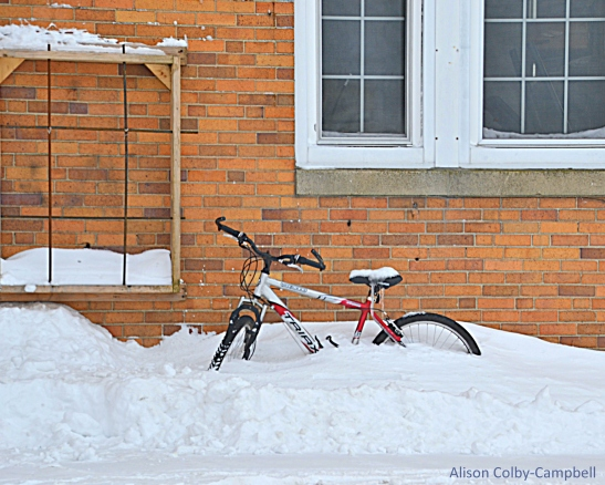 DSC_3302 Haverhill Snow 2018 Fire station bike