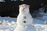 IMG_3748 Haverhill Snowman Safari