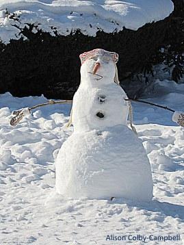 Bandana-ed snow chick
