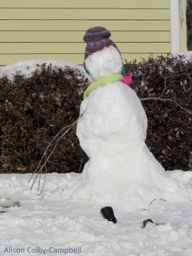 Left leaning snow person - a Democrat?