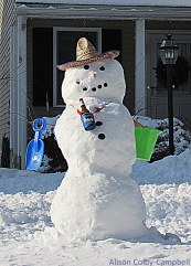 Party down snow dude. New albeit temporary Ward Hill resident.