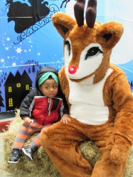 IMG_7353 (2) HAV (c)Alison Colby-Campbell GHCC 2018 CHristmas Stroll Jamon and Rudolph