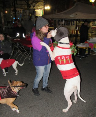 IMG_7382 (2) HAV (c)Alison Colby-Campbell GHCC 2018 CHristmas Stroll Dogs Zeus